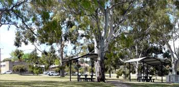 $55,000 toward lighting at Balmoral Reserve